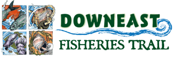 Downeast Fisheries Trail